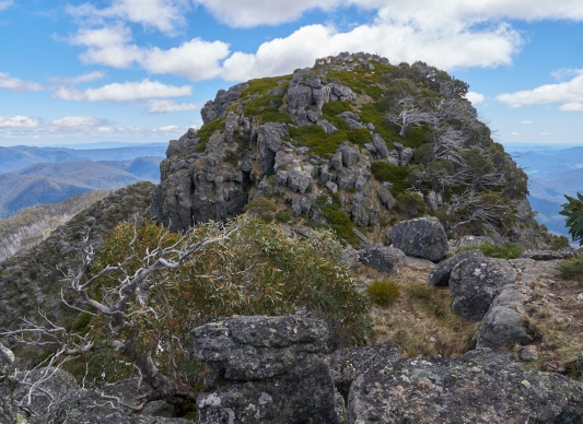 Mt Cobbler VIC 2019 PMEL3957
