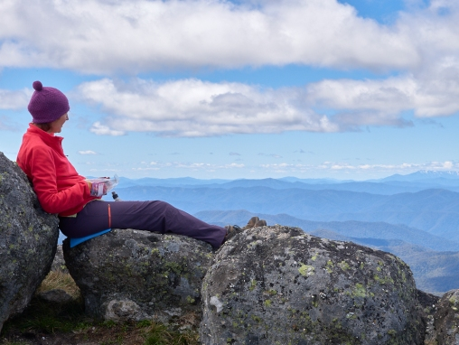 Mt Cobbler VIC 2019 PMEL3990